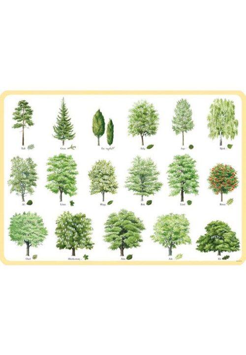 Zweedse bomen placemat