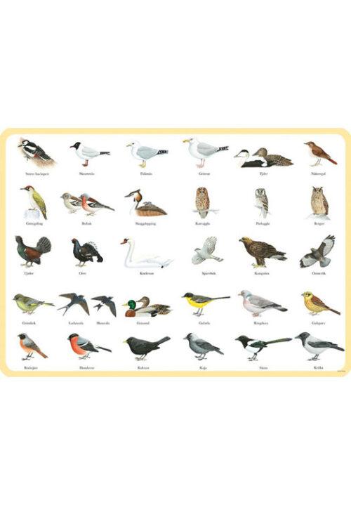 Zweedse vogels placemat